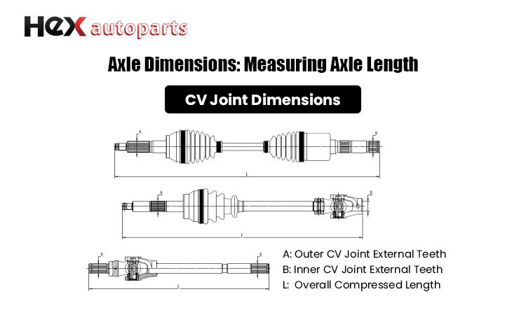 AxleDimensions.jpg